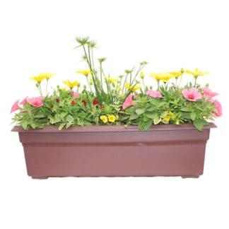 "24"" Flowering Window Box for Sun"