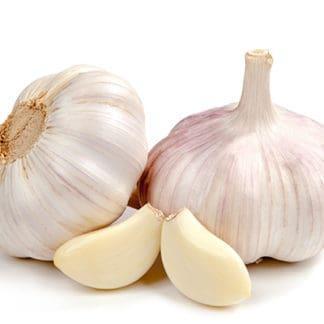 Garlic 'California'