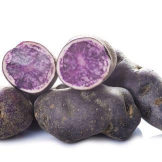 Potato 'Adirondack Blue'