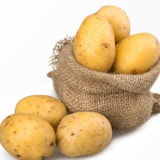 Potato 'Yukon Gold'