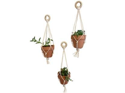 image of three mini macrame pots with succulents, for class example