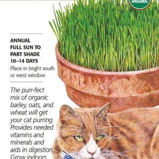 Cat Grass Mix Organic Seed Packet