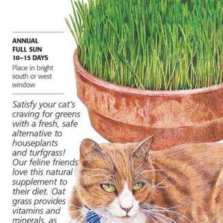 Cat Grass Oats Seed Packet