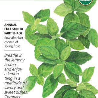 Lemon Basil Seed Packet