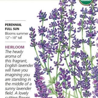 Munstead Lavender seed packet