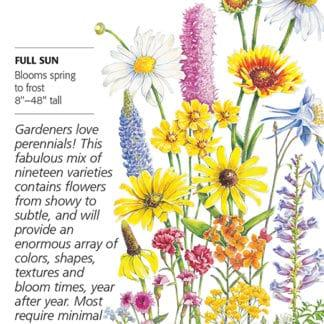 Perennial Bloom Flower Mix Seed Packet